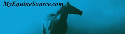 MyEquineSource-Horses for Sale